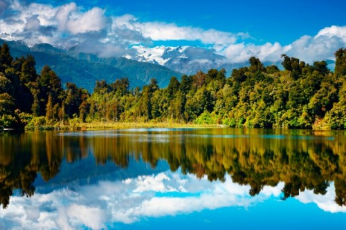 new-zealand-lake-forest-mountains-autumn-nature-485x728